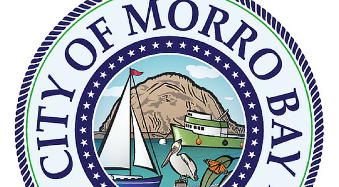 morro bay seal